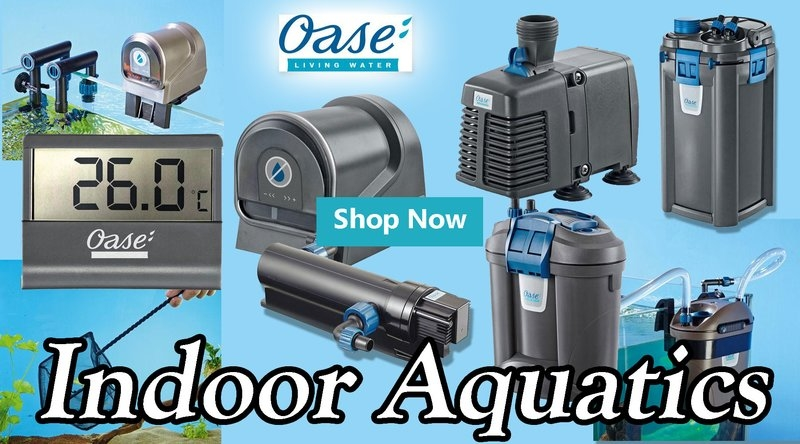 Oase Indoor Aquatics image