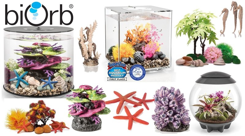 biOrb Aquariums and Accessories image