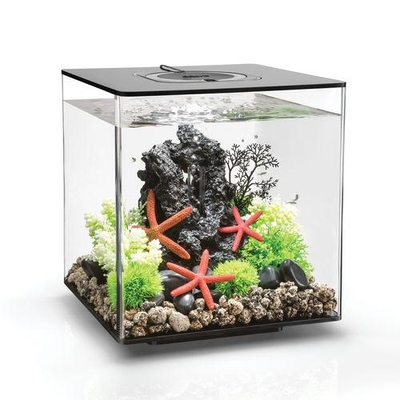biOrb CUBE 30 Aquarium - 8 gallon LED Black 54484 | biOrb Aquariums
