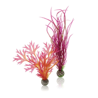 Image biOrb Plant Pack Red/Pink