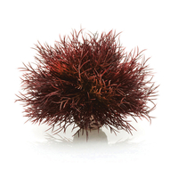 Image biOrb Sea Lily Crimson