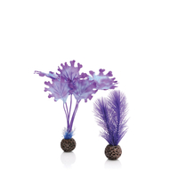 Image biOrb Kelp Plant Pack Purple