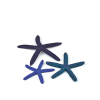 Image Blue biOrb Starfish Set