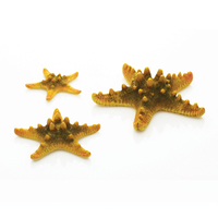 Image Yellow biOrb Starfish Set