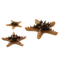 Image Natural biOrb Starfish Set