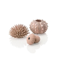 Image biOrb Sea Urchins Set 3 natural  48366