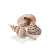 Image biOrb Sea Shell Set 3 natural
